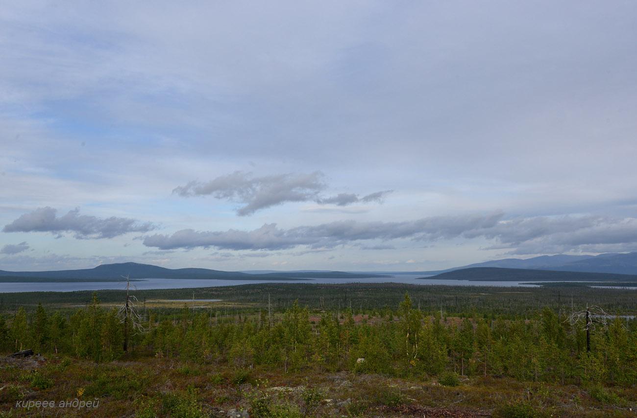 Озеро Имандра. Горелый лес.