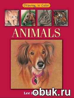 Книга Drawing in Color - Animals