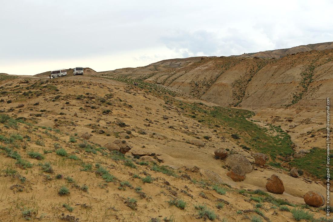 каменные конкреции Казахстан фотография