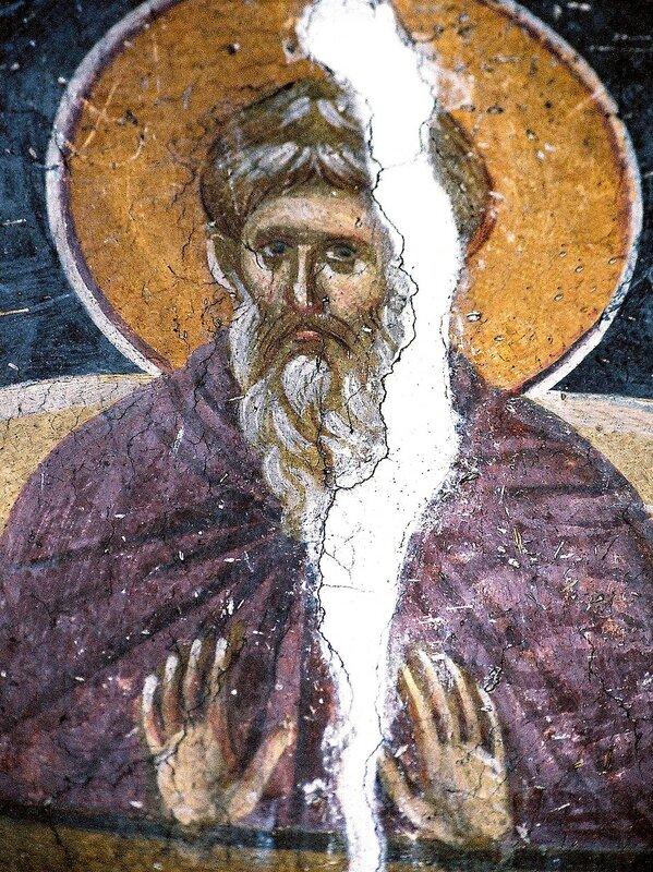 Святой Преподобный Даниил Столпник. Фреска монастыря Грачаница, Косово, Сербия. Около 1320 года.