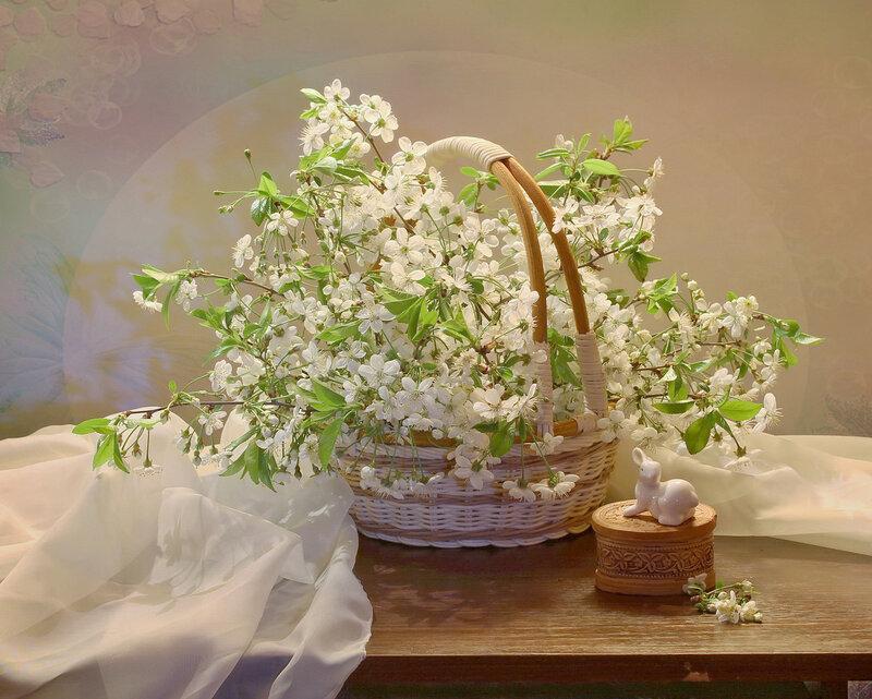 Цветущая вишня и фарфоровый зайчик для Лены (sanspirit)