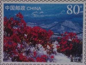 китай литера красн цветы в снегу 80