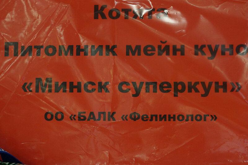 Питомник мейн-кунов http://minsksupercoon.jimdo.com/