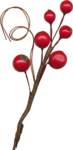 bellagypsy_homemadeholiday_berries.png