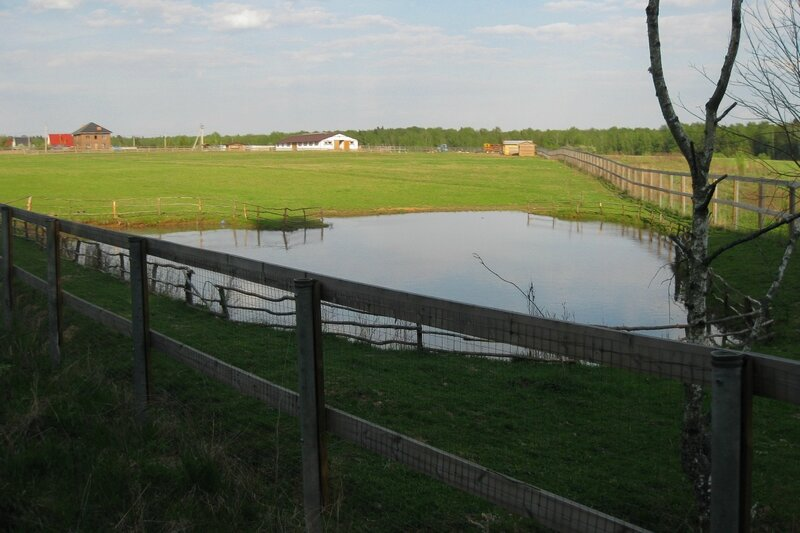 Ферма в Поседкино