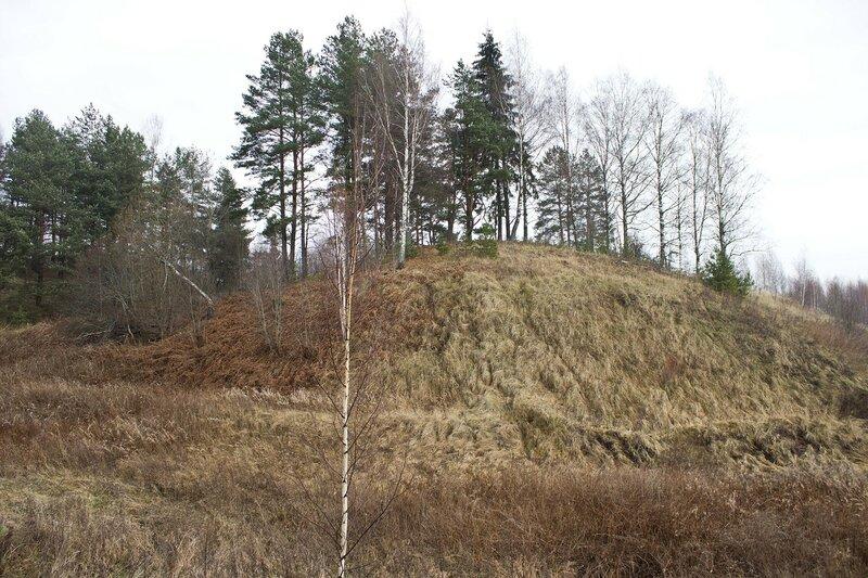 кладбище в деревне Кругликово
