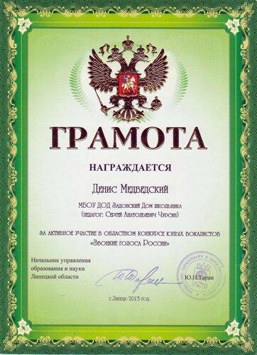 Липецк-2013, Звонкие голоса России, Медведский
