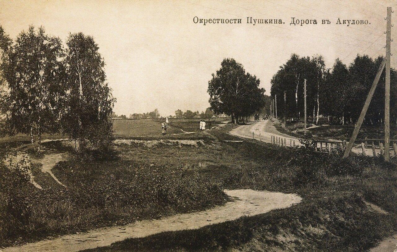 Окрестности Москвы. Пушкино. Дорога в деревню Окулово