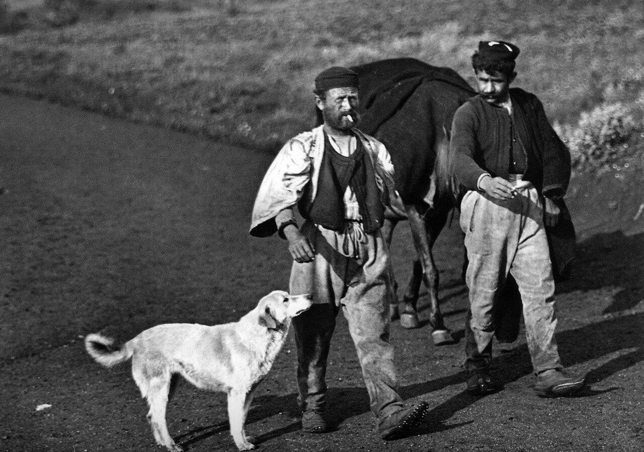 1913. Мужчины с собакой на дороге Превеза – Янина