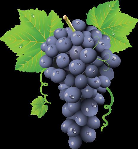 виноград (40).png