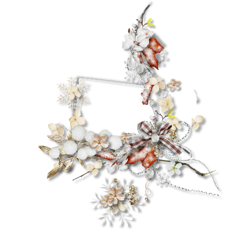 natali_14_winter_cluster1.png