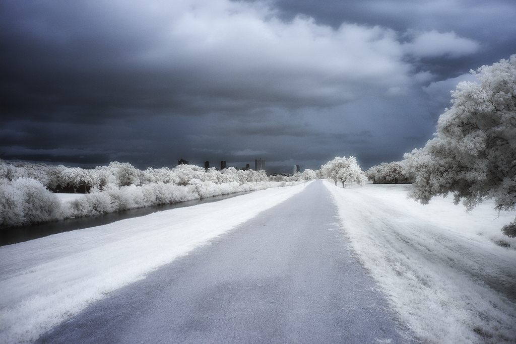 Winterized, Greg Westfall.jpg