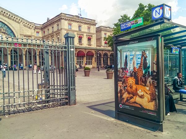 Трогательные городские истории в фотопроекте Владимира Антаки `The Guardians`