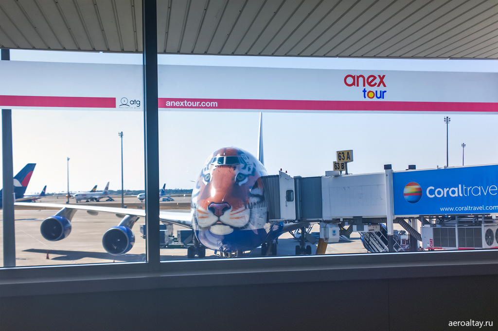 Боинг 747 Трансаэро Полосатый рейс