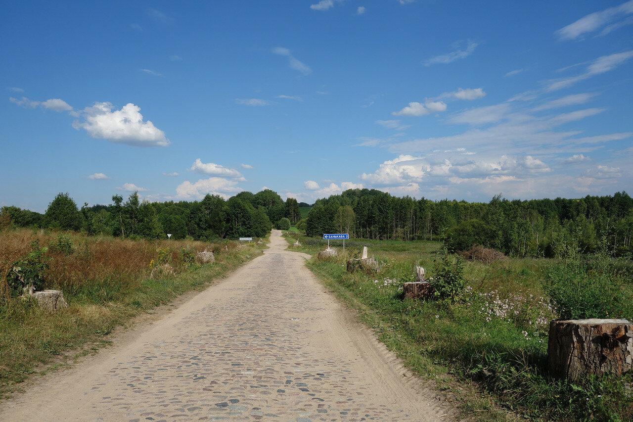 булыжная дорога и срубленная аллея