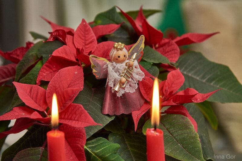 Зажгите свечи-праздник в дом идёт!