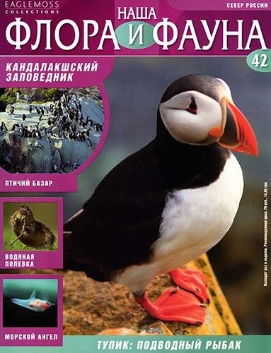Книга Журнал: Наша флора и фауна №42 (2013)