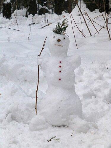 Снеговичок-лесовичок...