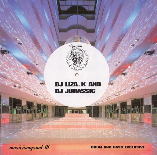 dj Liza.k and dj Jurassic - musicismysoul III (2005) FLAC