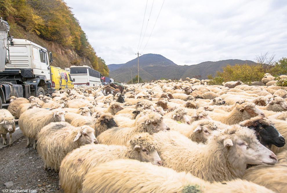 8. И снова пробки на Военно-Грузинской дороге.
