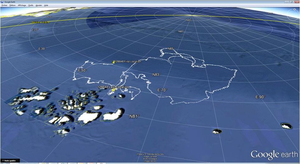 Полная траектория оставшегося в живых буя 3 декабря буй замолчал между Рудольфа и Белой Землей (Ева-Лив) на ЗФИ..jpg
