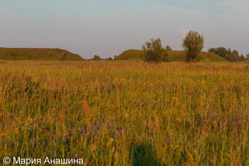Южный оборонительный вал в городище Старая Рязань