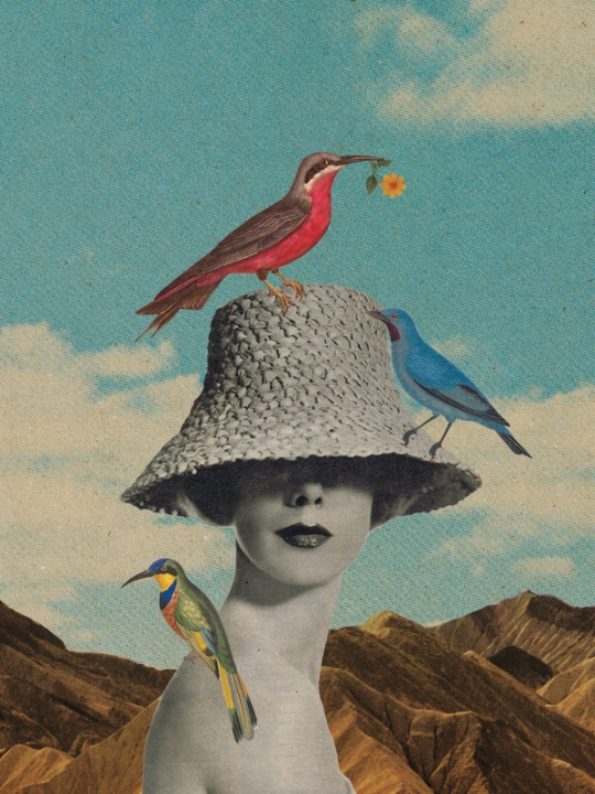 Amazing Collage Artworks