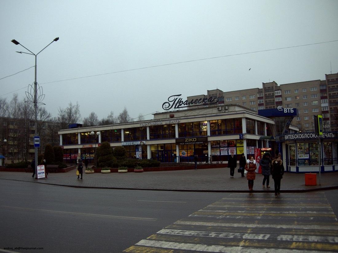 Пралеска в Новополоцке днём.