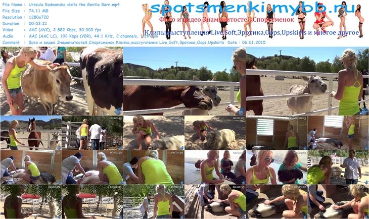 http://img-fotki.yandex.ru/get/16110/14186792.17a/0_f8201_3f26cba0_orig.jpg