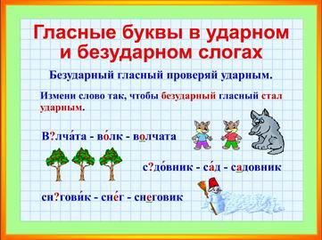 Как выучить правила по русскому языку