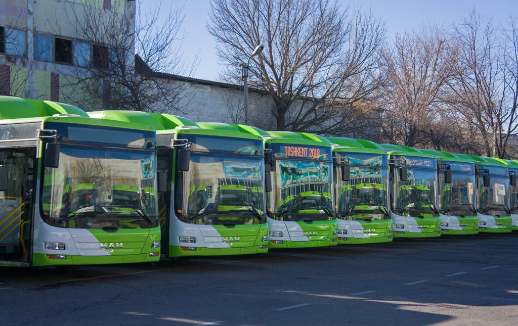 Новые автобусы MAN в Ташкенте