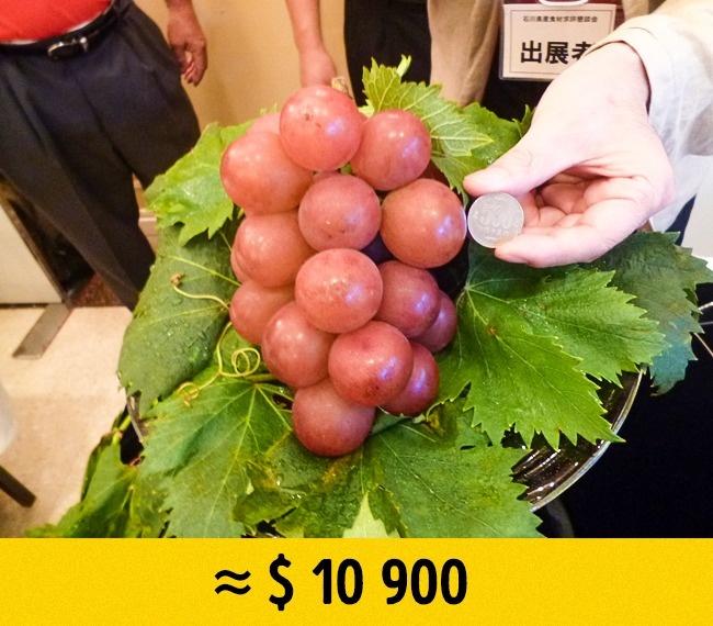 © imgur  Этот красный виноград, выведенный японскими селекционерами,— самый дорогой вмире. К