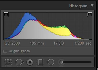 Фото 4. Диаграмма с данными RGB. Уроки фотографии для новичков бесплатно.