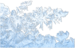 mzimm_snow_wonder_ice_flower_overlay_sh.png