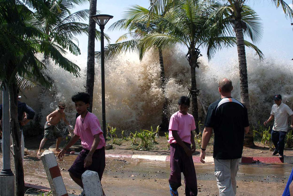 Ten years after, The 2004 Indian Ocean Tsunami in focus80.jpg