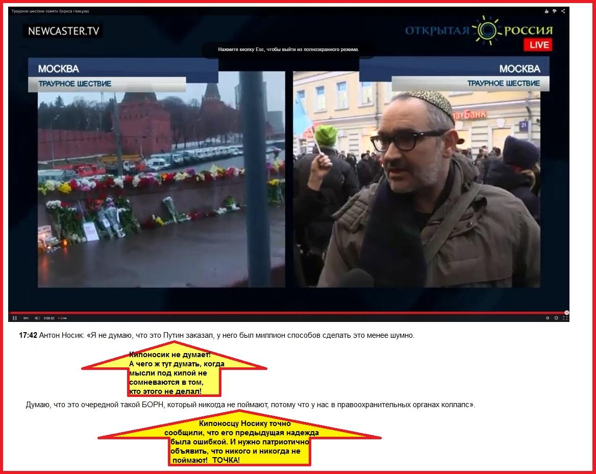 Немцов, Носик Антон. На Марше памяти, Первого марта 2015 года