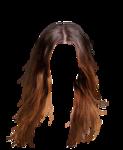 hair12.png