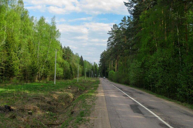 Дорога в Долгиниху