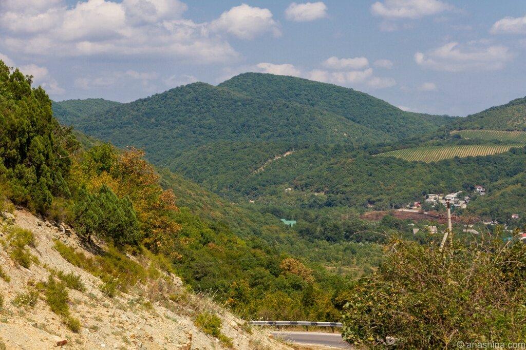 Горы и виноградники, Дюрсо