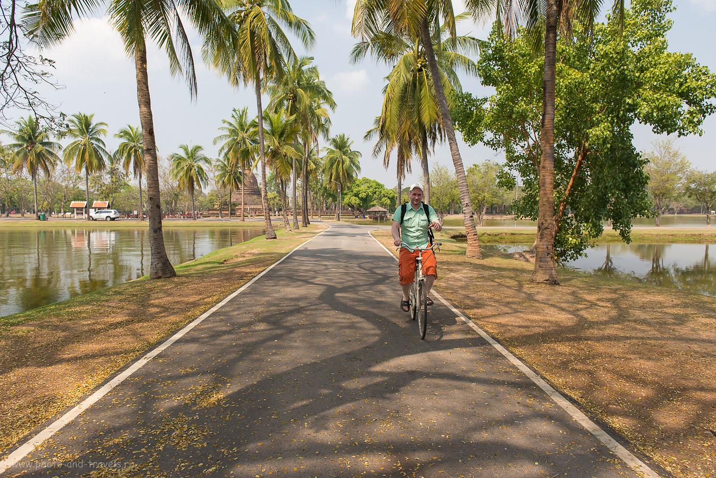 Фотография 7. Самый подходящий вид транспорта для осмотра достопримечательностей в историческом парке Sukhothai Historical Park - велосипед! Отзывы туристов о самостоятельном отдыхе в Таиланде