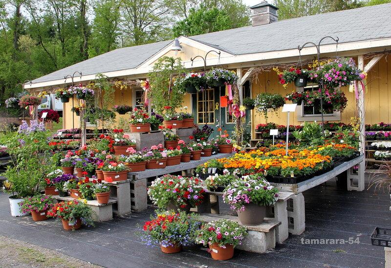 Вход в цветочный магазин.