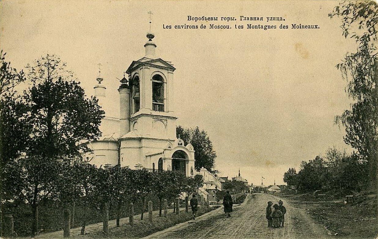 Окрестности Москвы. Воробьевы горы. Главная улица
