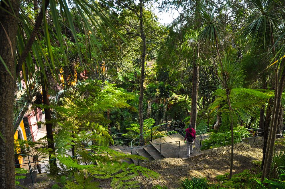 Madeira-Garten-(10).jpg
