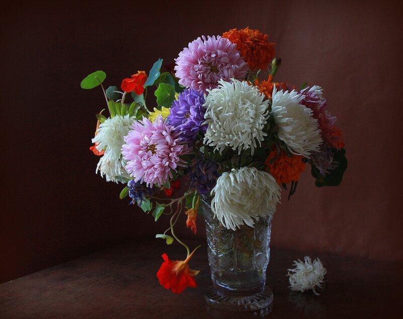 Первые холода, последние продрогшие цветочки