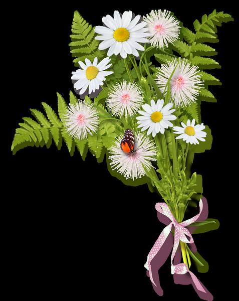 Хорошего, картинки букеты полевых цветов на прозрачном фоне