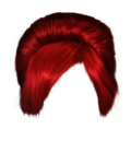 hair_PNG5613.png