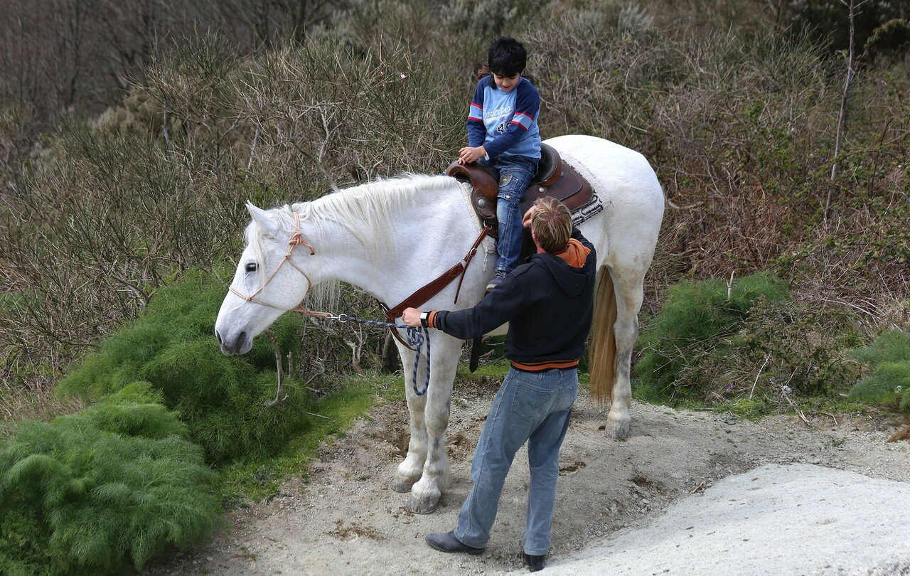 Ischia, mount Epomeo. Horseback riding