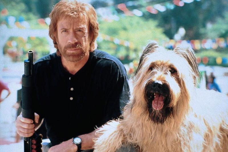 Фильм чак норрис главная собака остаться в живых актеры и роли фильм