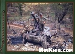 Книга Photos from the Archives. Battle Damaged and Destroyed AFV. Part 15