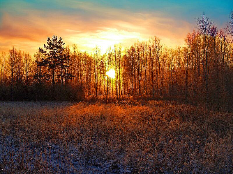 Рассвет на Белоглинском болоте (Сысертский район Свердловской области)